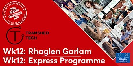 Wk12: Express Programme Outcomes | Mynegi canlyniadau'r rhaglen tickets