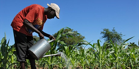 Agriculture and Food Security Forum - with Kasinthula Cane Growers tickets