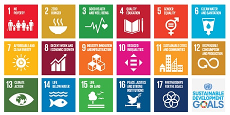 The integration of SDGs in Business Schools & Universities tickets