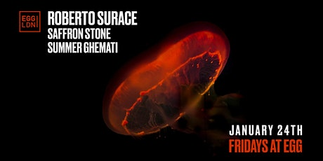 Fridays at EGG: Roberto Surace, Saffron Stone More tickets
