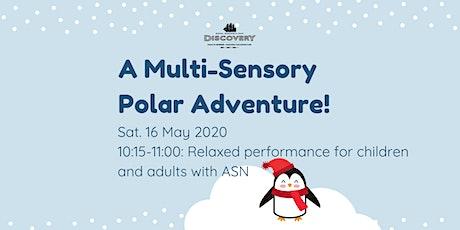 Relaxed Performance: A Multi-sensory Polar Adventure! tickets