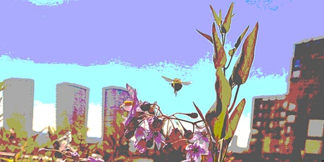 Livery Lunch - Let's Talk About Bees tickets