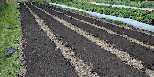 Applying Soil Health in Hort Systems - Part 2 - Pl