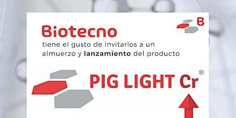 Lanzamiento PIG LIGHT Cr entradas