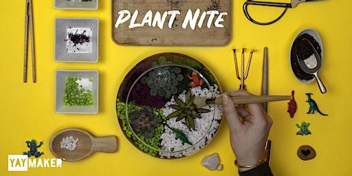 Plant Nite: Make a Succulent Terrarium