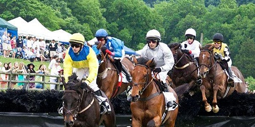Queen's Cup Steeplechase Outing