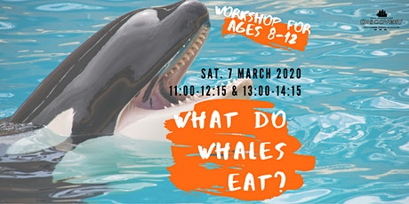 What Do Whales Eat? tickets