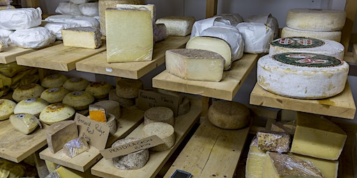 Academy of Cheese - Level One