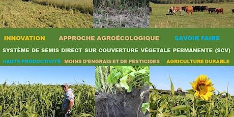 Formation en agroécologie, système SCV billets