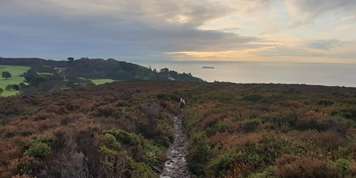 Howth Trails!