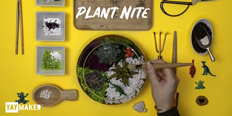 Plant Nite: Make a Succulent Terrarium billets