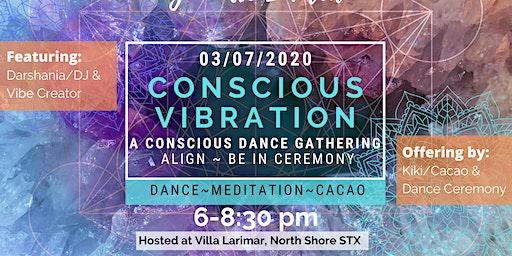 Conscious Vibration Community Gathering