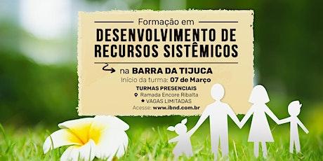 Formação Desenvolvimento de Recursos Sistêmicos - Barra da Tijuca ingressos