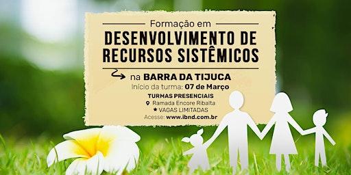 Formação Desenvolvimento de Recursos Sistêmicos - Barra da Tijuca