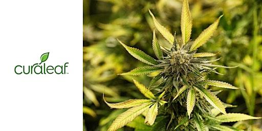 Long Island for Medical Cannabis