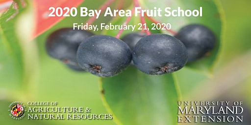 2020 Bay Area Fruit Meeting