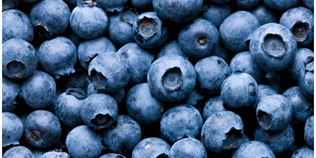 Small Fruit Series: Blueberries tickets