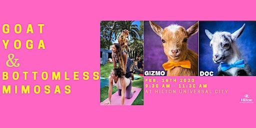 Goat Yoga with Bottomless Mimosas