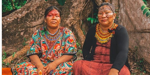 Vivência Aldeia Shanekaya - Amazônia