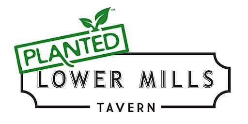 Lower Mills Tavern: Planted