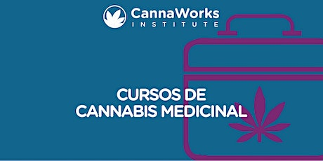 ARECIBO | Cannabis Training Camp | CannaWorks Institute  entradas