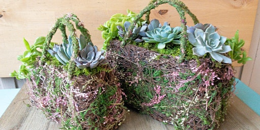Succulent handbag planters