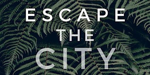 Escape the City Miami