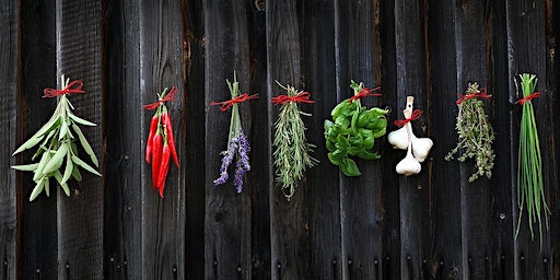 Growing, Harvesting and Preserving Herbs