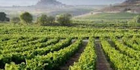 Wine Exploration Series:  SPAIN! tickets