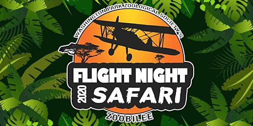 Flight Night Safari
