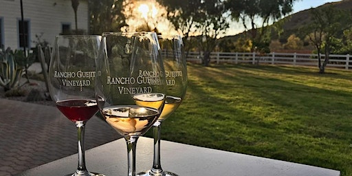 Vino  and Vinyasa Day Escape to Rancho Guejito Vineyard