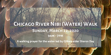 Chicago River Nibi (Water) Walk tickets