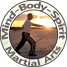 Mind-Body-Spirit Martial Arts logo