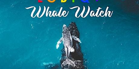 Maui Equality Coalition Whale Watch tickets