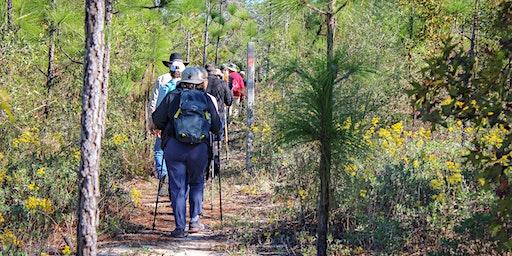 Econfina Trail Maintenance_Feb 2020