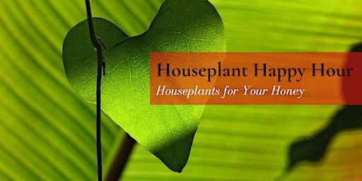 Houseplant Happy Hour