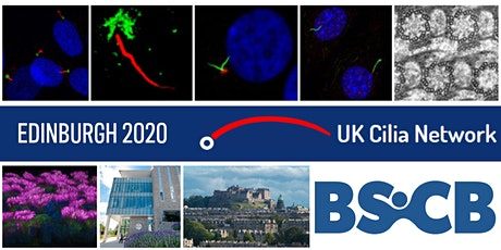 BSCB-UK Cilia Spring Meeting tickets