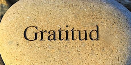 La Gratitud tiene un poder de transformación, aprende a vivirlo entradas
