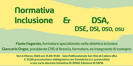 Normativa Inclusione & DSA, DSE, DSI, DSO, DSU biglietti