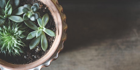 Create your own Succulent Diffuser tickets