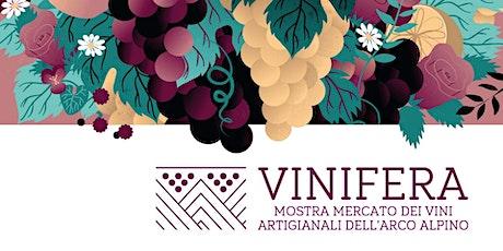 Vinifera 2020 - Mostra mercato dei vini artigianali dell'arco alpino biglietti