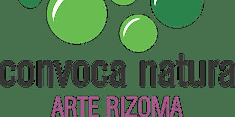 convova natura_arte rizoma taller anfibio entradas