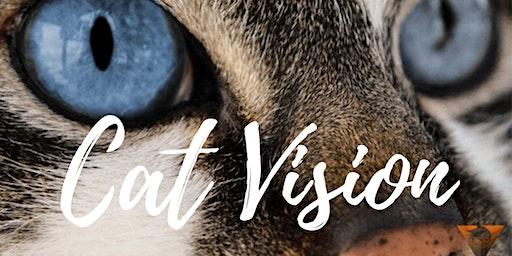 Cat Vision lessenreeks: Sessie 5