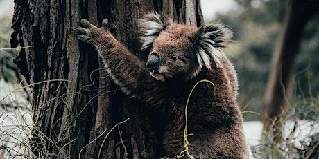 Australian Wildfire Appeal tickets