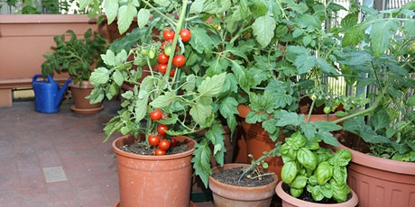 Urban Container Farming: Grow Your Own! tickets