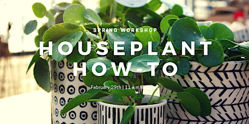 Houseplant How-To Workshop