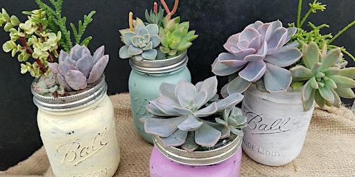 Mason Jar Succulent Planting