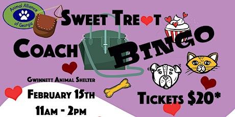 Sweet Treat Coach Bag Bingo tickets