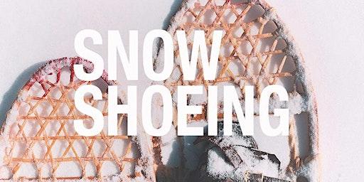 Snowshoeing to Todd Lake