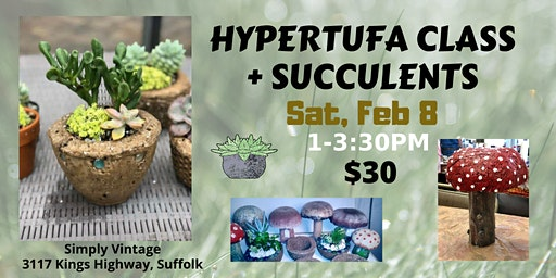 Learn the Art of Hypertufa + Succulents!
